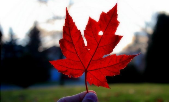 加拿大概况